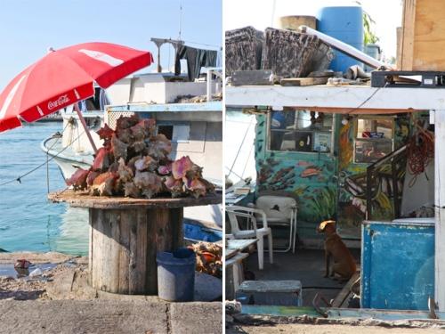 Potter's Cay, Nassau, Bahamas
