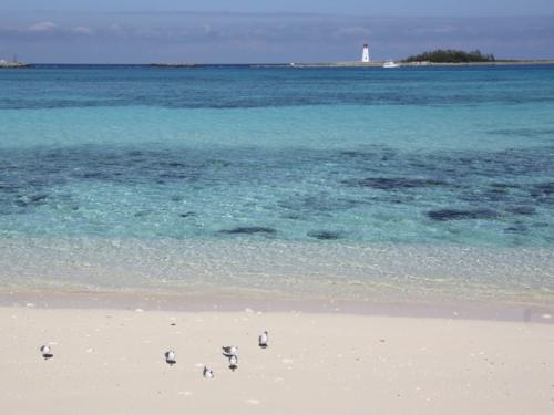 Junkanoo Beach, Nassau